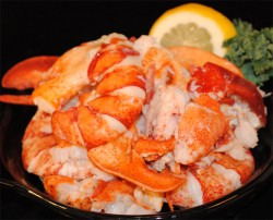 Category - Fresh Cooked Maine Lobster Meat